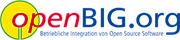 Logo of big-consulting GmbH